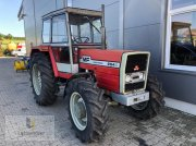 Massey Ferguson 294 AS Traktor